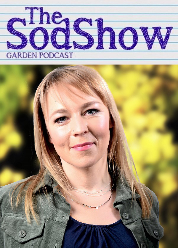 Sodshow Cover image