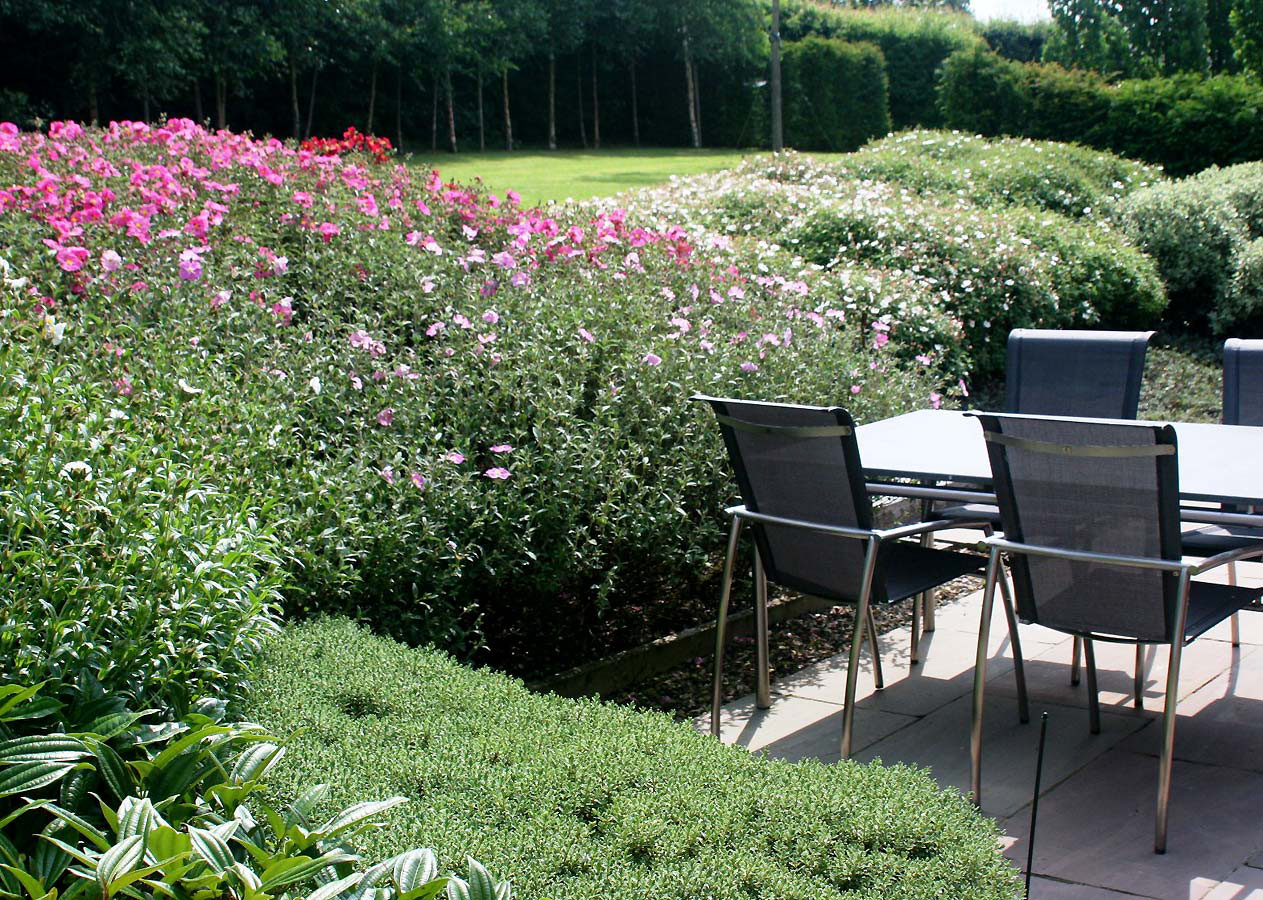 Corner of terrace with furniture surrounded by soft planting. Rae Wilkinson Garden and Landscape Design - Garden Designer Sussex, Surrey, London, South-East England
