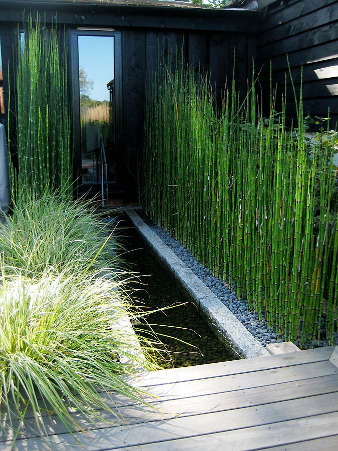 Detail of deaking and rill with bamboo. Rae Wilkinson Garden and Landscape Design - Garden Designer Sussex, Surrey, London, South-East England