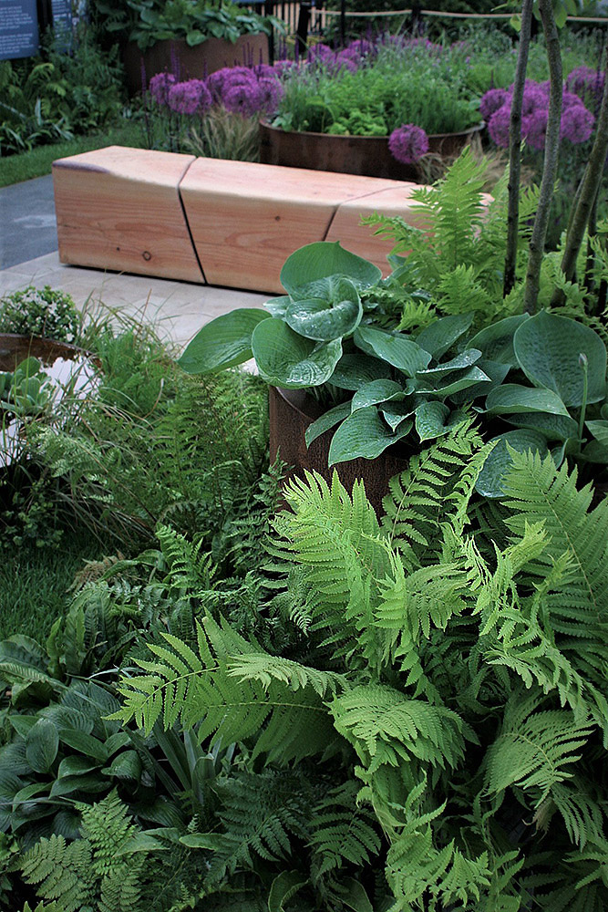 Rae Wilkinson's Chelsea Show Garden with detail of bespoke wooden bench and planter.