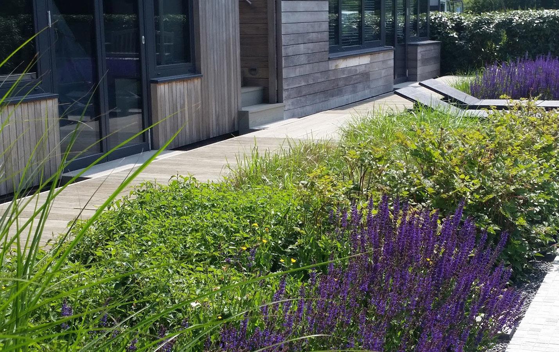 A Modern Rural Garden - Rae Wilkinson Garden and Landscape ...